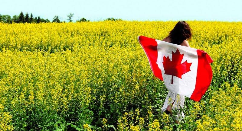 Trudeau apura plan de combustibles limpios que entusiasma a productores de canola