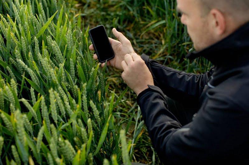 ¿Cómo pueden los pequeños agricultores adoptar nuevas tecnologías?