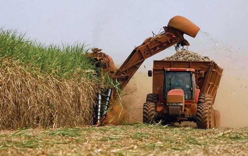 Brasil: concluye la zafra en la región Centro-Sur con récord en la producción de bioetanol