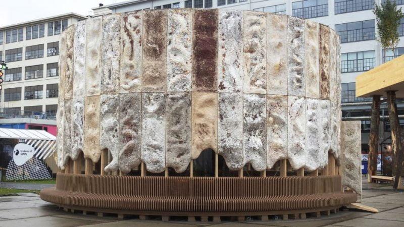 Este edificio de hongos limpia el aire a medida que crece