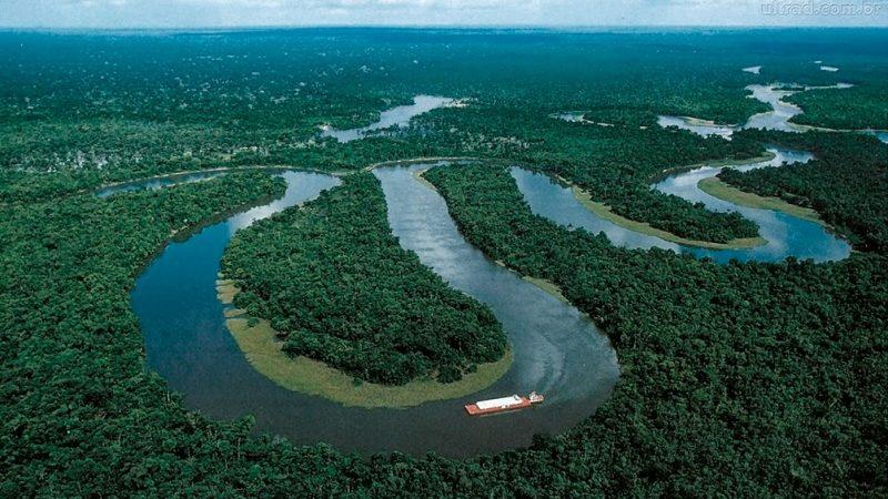 Brasil: por presiones externas crece el interés de promover la bioeconomía en la región de Amazonia