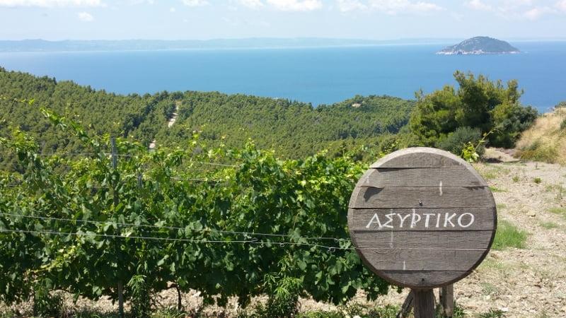 El vino griego vuelve a sus bases para resistir el cambio climático