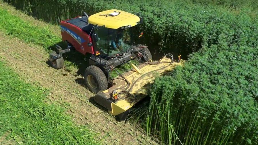 New Holland impulsa el cultivo de cáñamo