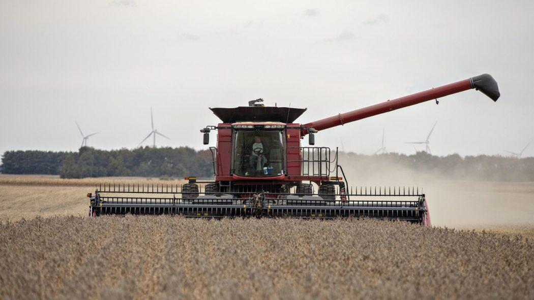EEUU: Caída en los precios de los commodities agrícolas pone en jaque la salud financiera de los farmers