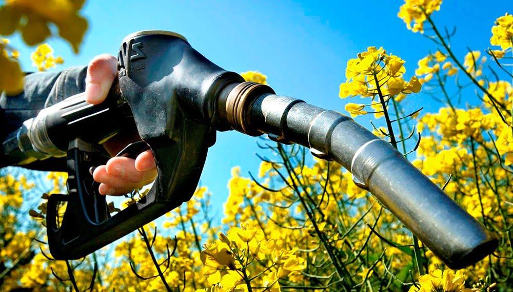 Productores canadienses reclaman mayor uso de biocombustibles