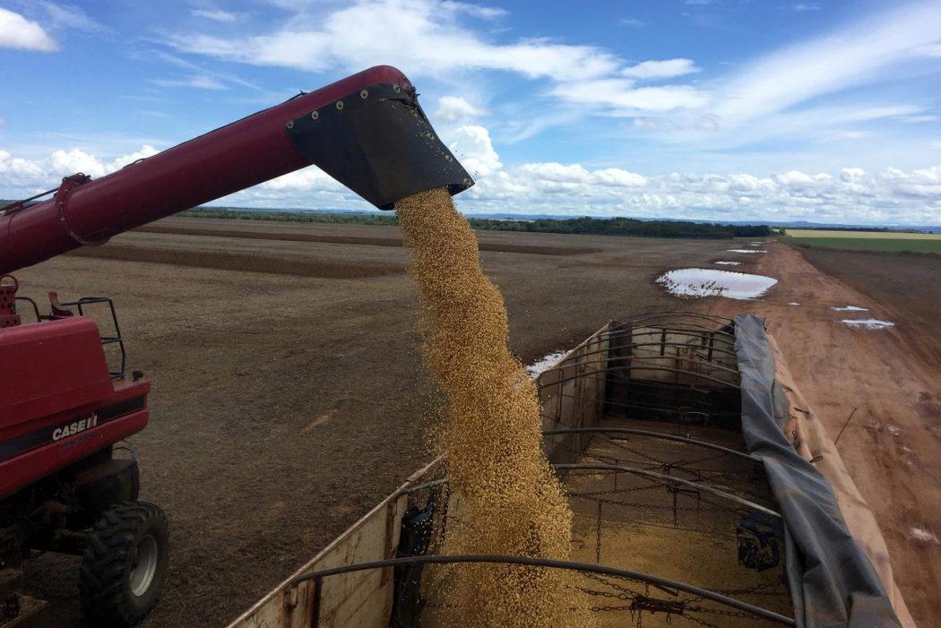 Cómo actuar en la cosecha de granos frente al contexto del Coronavirus