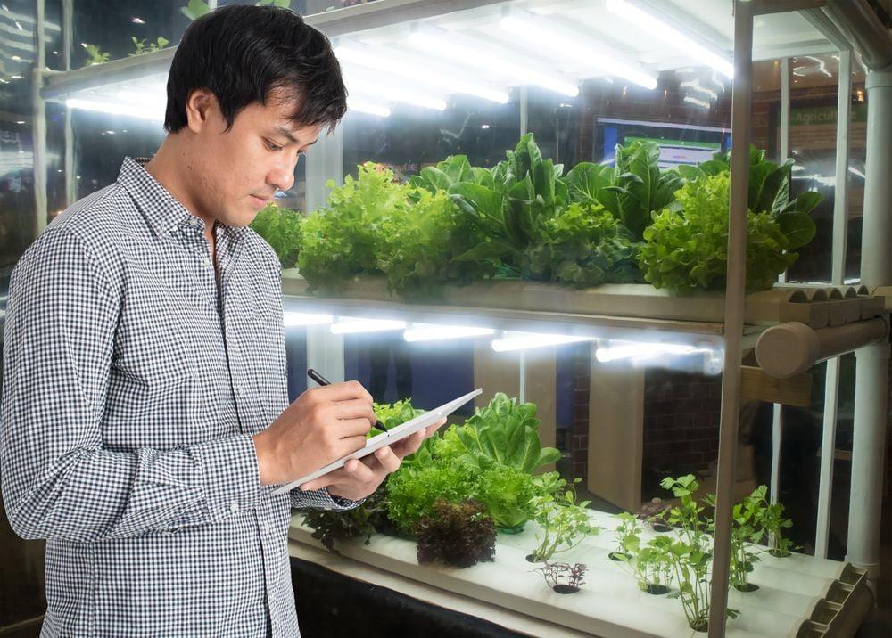 IICA lanza curso virtual gratuito sobre medidas de prevención en el agro ante covid-19