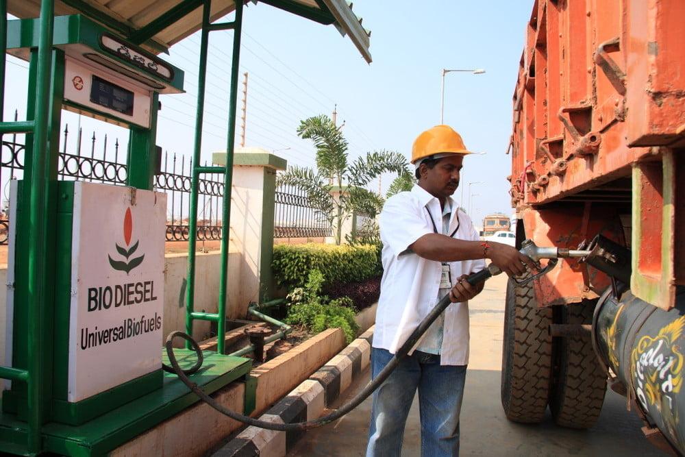 La industria india de biodiesel en jaque por la caída de exportaciones de carne a China