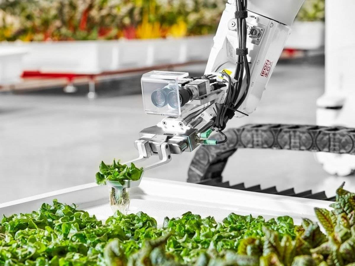 Tecnologías innovadoras para transformar los sistemas alimentarios