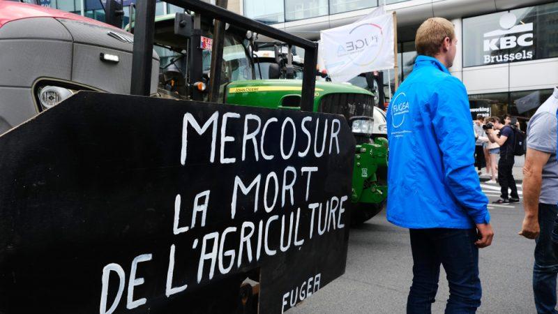 Ambientalistas europeos vuelven a la carga contra del Acuerdo UE-Mercosur