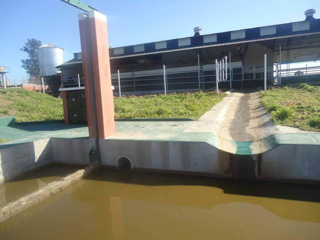 Agua y Efluentes. Marco Legal para uso agronómico y manejo de purines