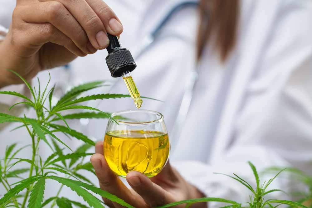 CBG, una alternativa prometedora al aceite cannabis