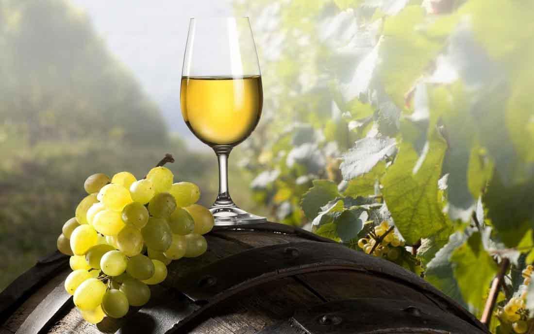 ¿Qué significa que un vino sea certificado como sostenible?
