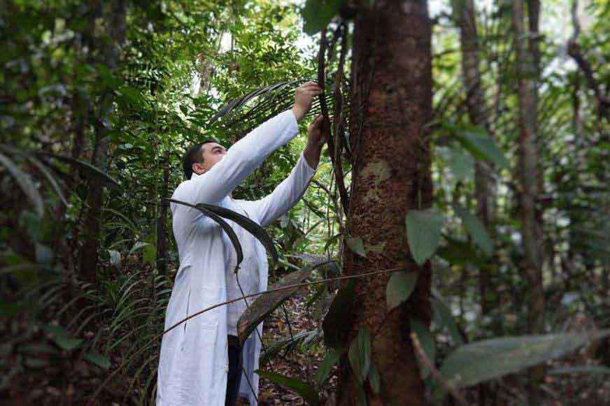 Bolsonaro apuesta a la bioeconomía para el desarrollo de las comunidades del Amazonas