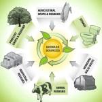 Bioenergy Resources in MENA Countries