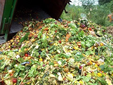 Food Waste | BioEnergy Consult
