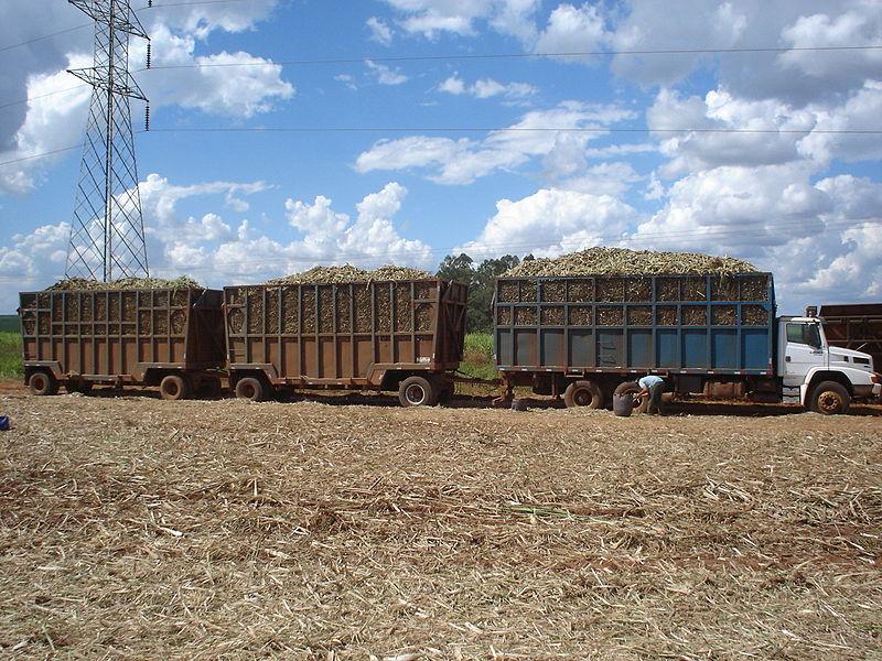 Biomass-Energy-Supply-Chain