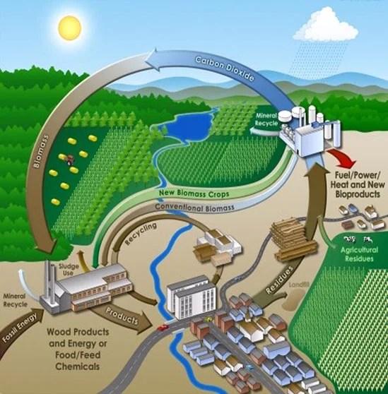 biorefinery-process