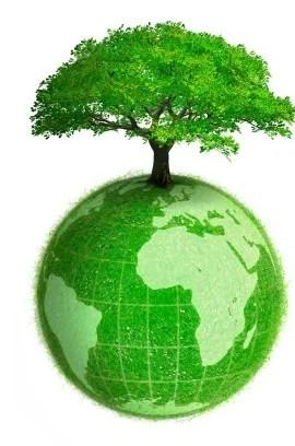 greener-business