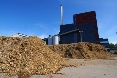 Biomass-India