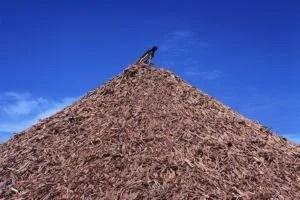 wood wastes