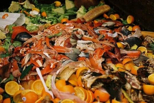 food-waste-behavior