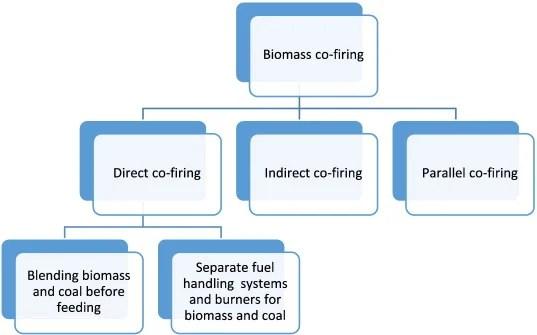 types-of-biomass-cofiring