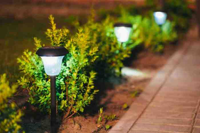 solar-landscape-lighting