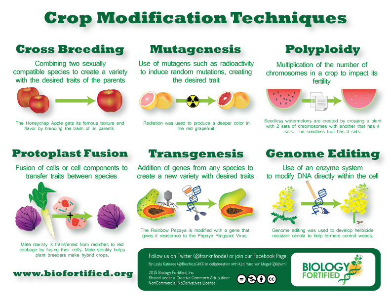 Crop Modification Techniques Biology Fortified Inc