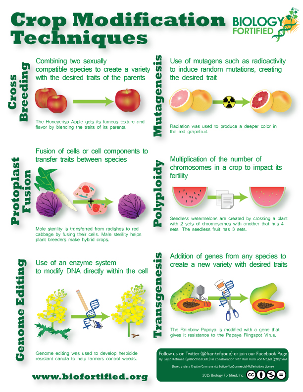 Crop Modification Techniques Infographic Biology Fortified Inc
