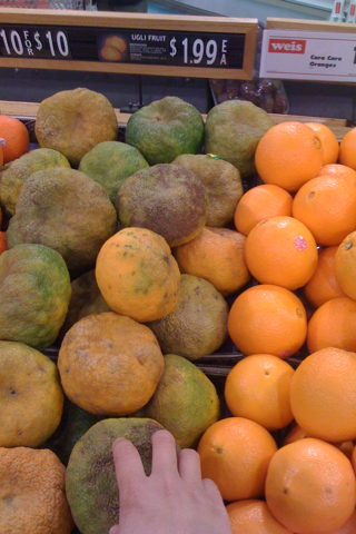 Ugli fruit by Steve Eng via Flickr