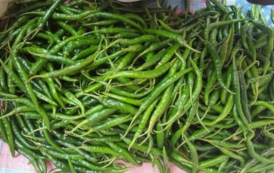 Chili Green Fresh