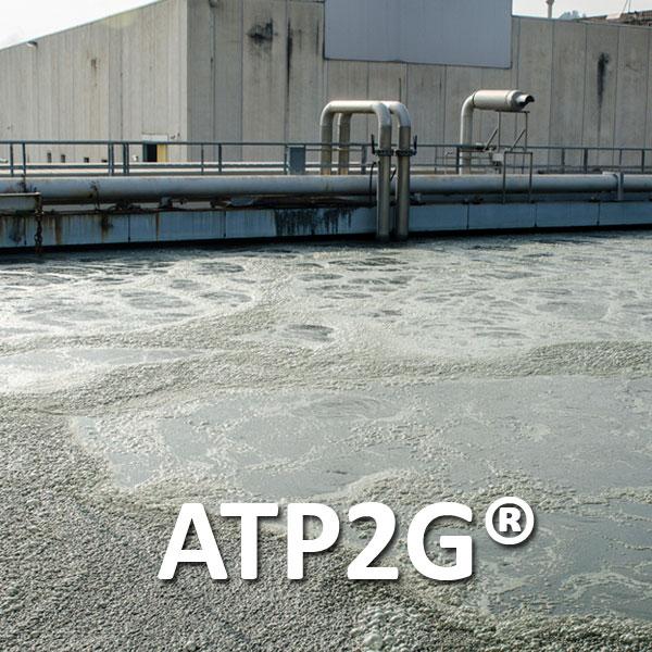 ATP2G_home