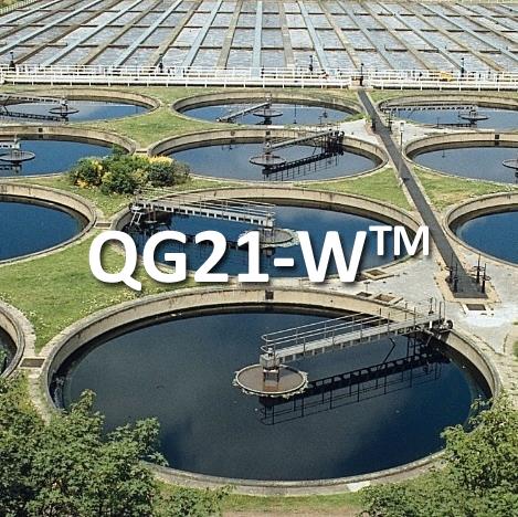 qg21-W