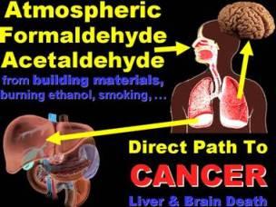 efek formalin bagi kesehatan