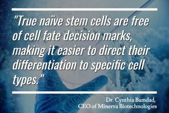Minerva Bio - Naive Stem Cells
