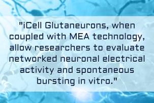 iPSC-derived Neurons