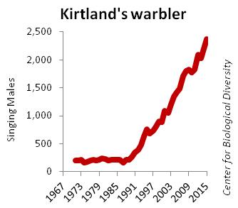 Kirtland's warbler population graph