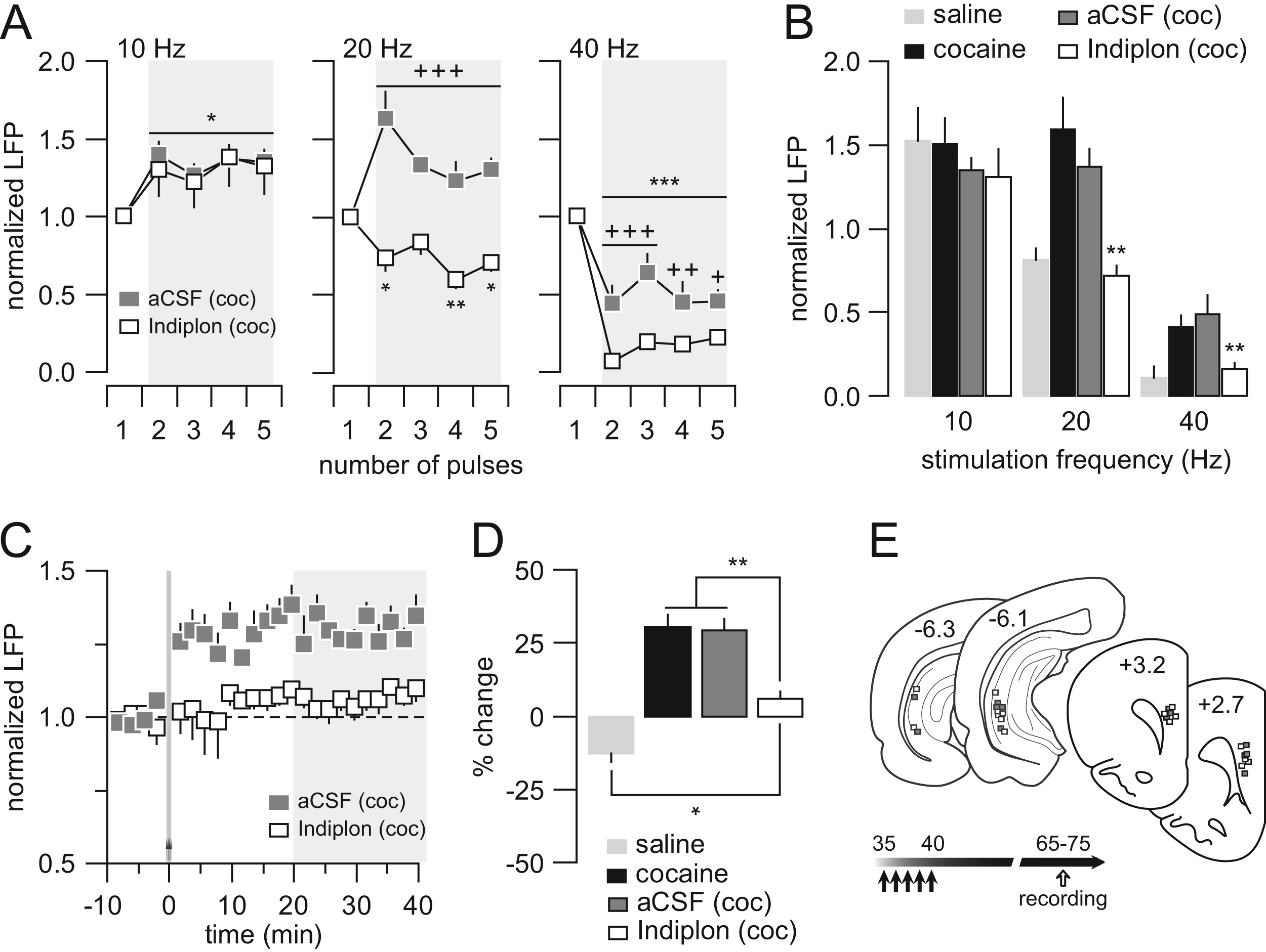 Developmental Disruption Of Gamma Aminobutyric Acid