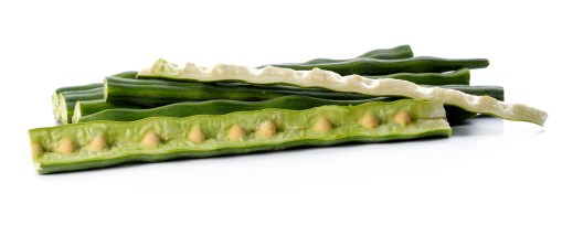 Les graines de Moringa bio produite par le laboratoire Biologiquement