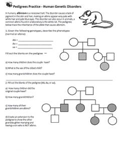 Pedigrees Human Genetic Disorders