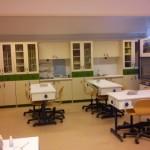 Τεχνικά εγχειρίδια για Εργαστηριακές Ασκήσεις Βιολογίας Λυκείου – Γυμνασίου