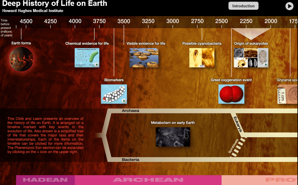BioInteractive_Deep History of Life on Earth