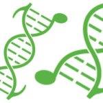 Μαθαίνοντας Βιολογία … μετά μουσικής