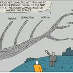 Το κόμικ της Εξέλιξης