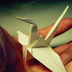 Origami με ζωντανούς οργανισμούς