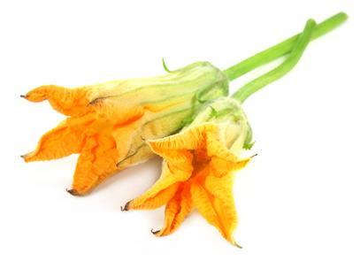 Originales recetas con Flor de Calabaza