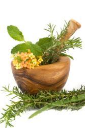 Fitoterapia y Alimentos contra Alergias