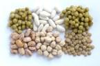 El adecuado consumo de proteínas animales y vegetales