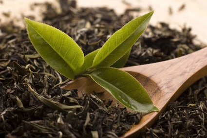 Agricultura ecológica y desarrollo sostenible